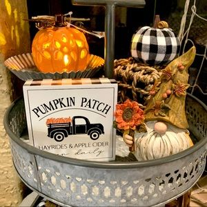LIGHT UP PUMPKIN FALL AUTUMN HARVEST DECOR